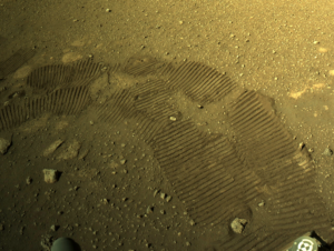 """First Drive Went Incredibly Well"": NASA On Mars Rover. See Video"