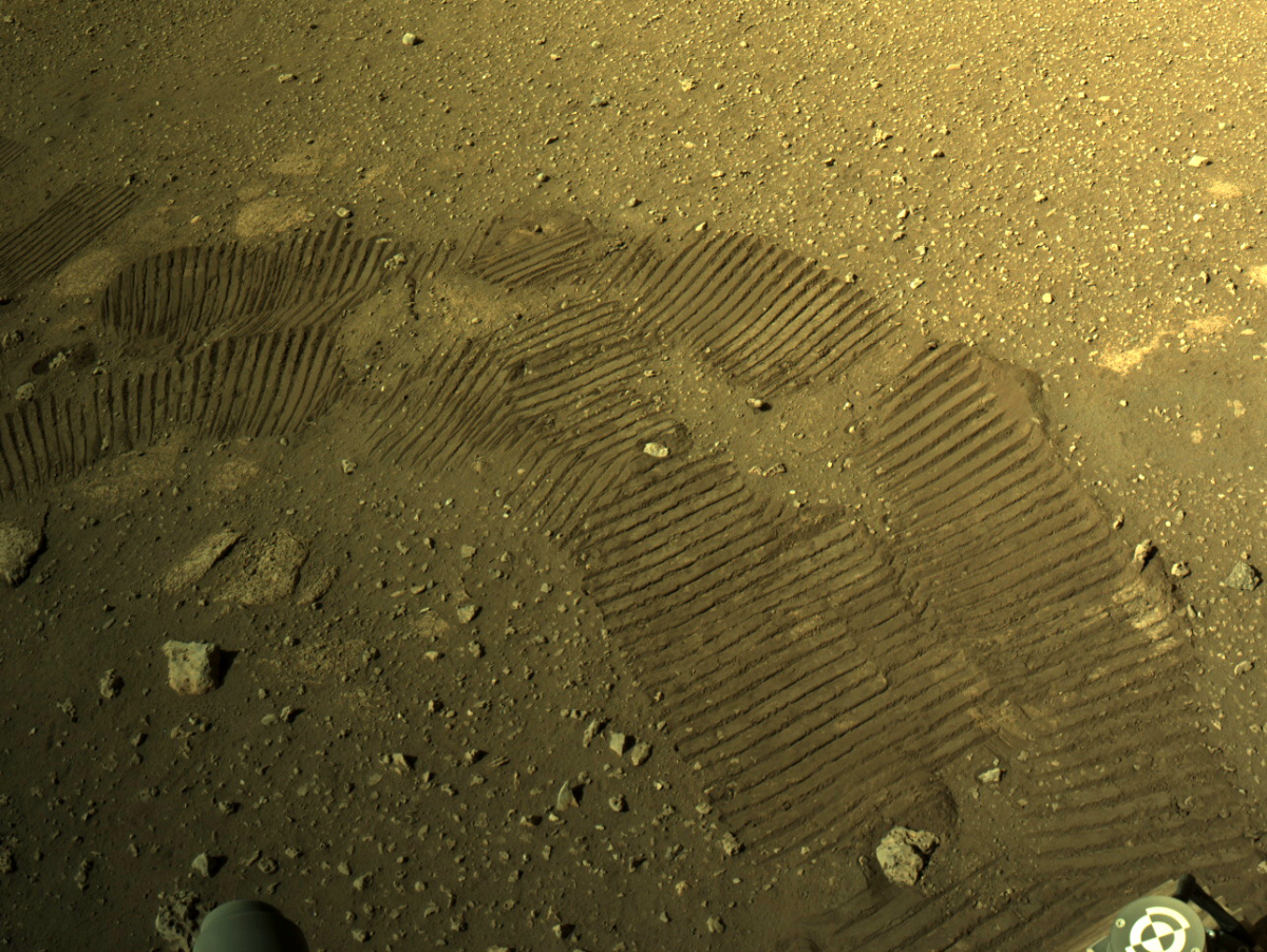 """""""First Drive Went Incredibly Well"""": NASA On Mars Rover. See Video"""